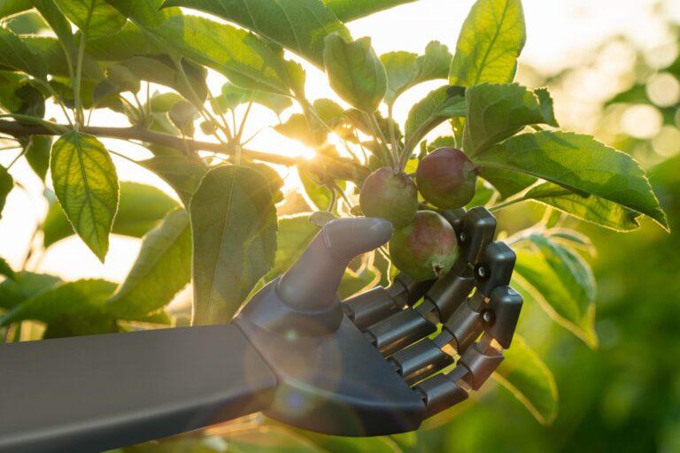 artificial intelligence e agricoltura di precisione