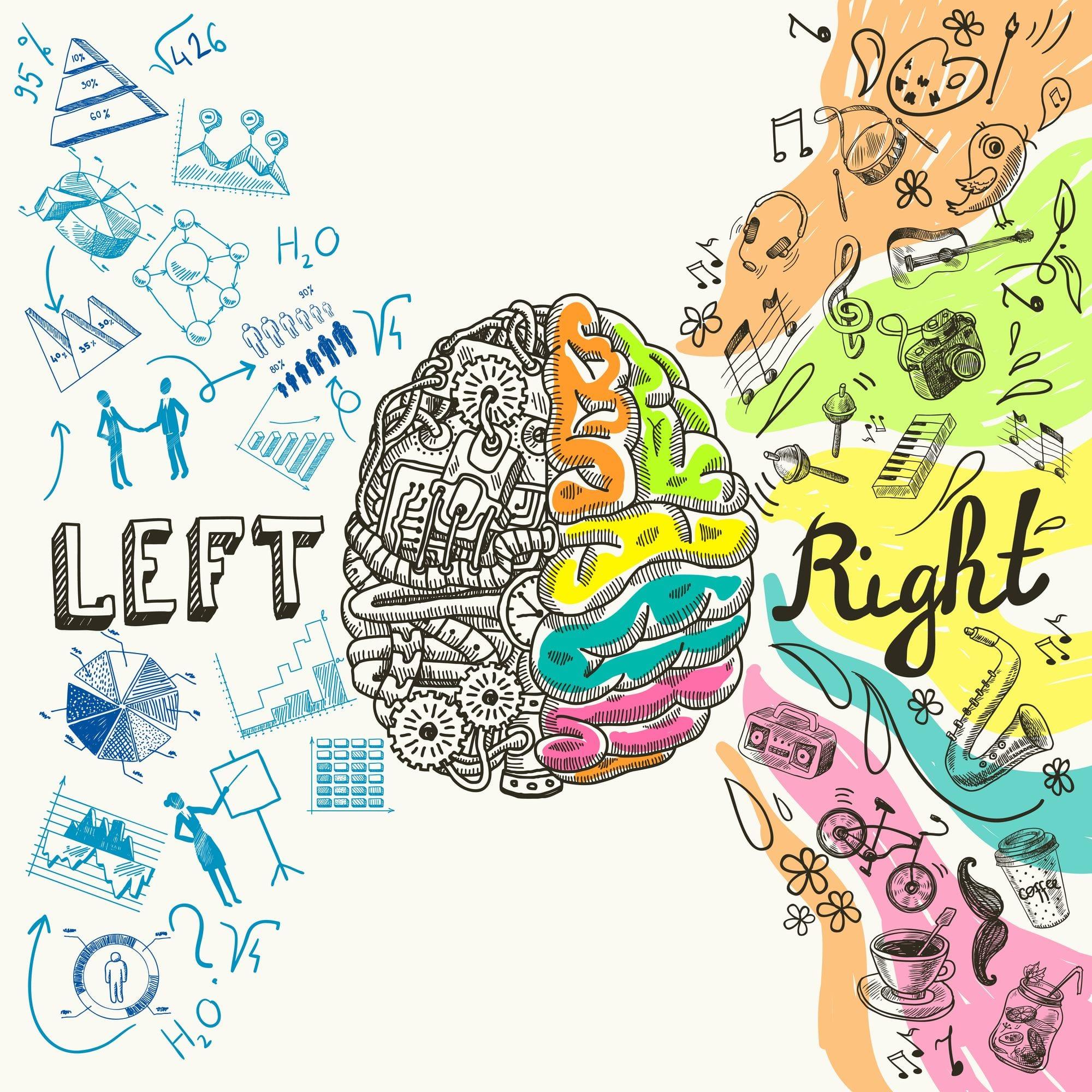 Intelligenza - emisfero sinistro ed emisfero destro