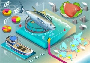 Tracciabilità prodotti alimentari e consumo responsabile