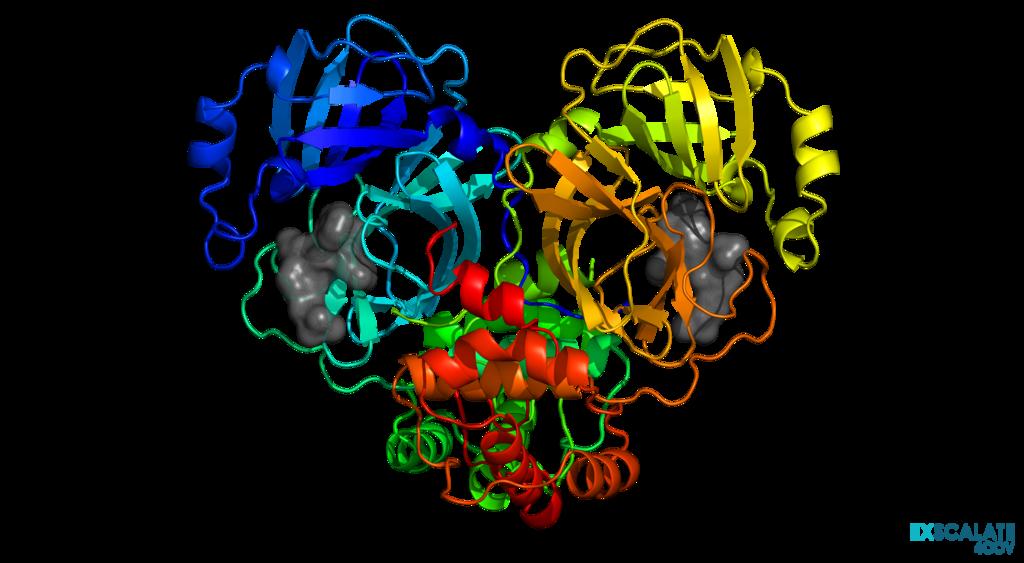Conosorzio Exscalate4Cov - 3cl-protease-rainbow