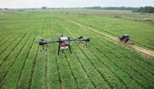 agricoltura italiana