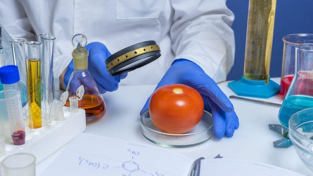 biotecnologie alimentari pomodoro