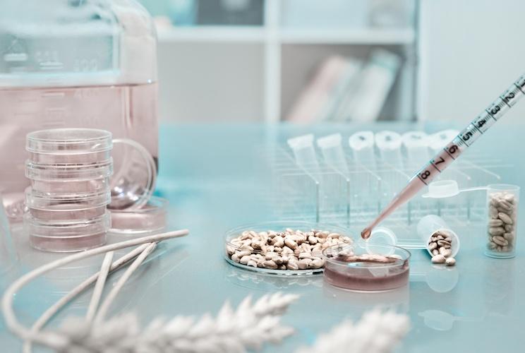 genomica e miglioramento genetico