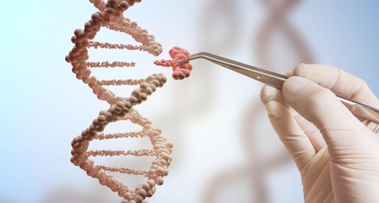 ingegneria genetica - genoma del cancro