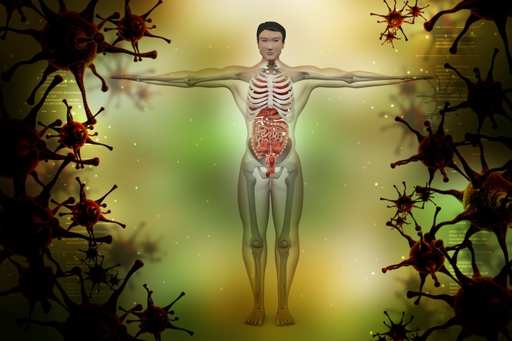 nanotecnologie e medicina rigenerativa