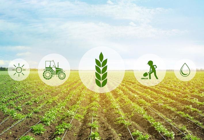tecnologie per l'agricoltura sostenibile
