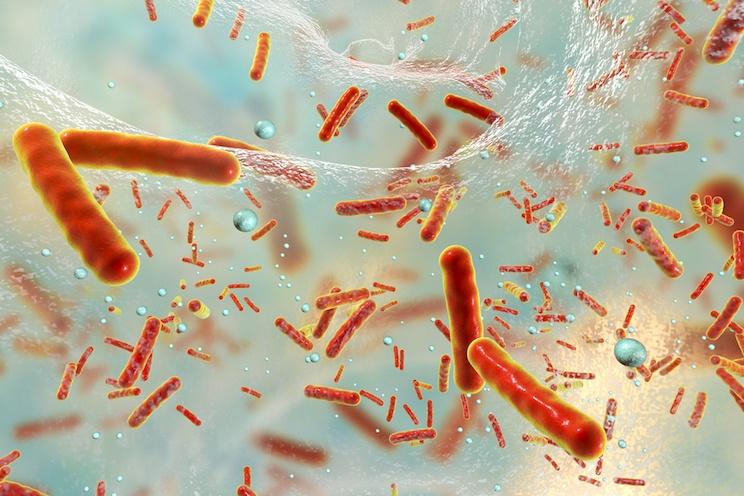 nanotecnologie e resistenza antibiotici
